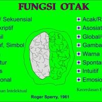 fungsi otak kanan-kiri