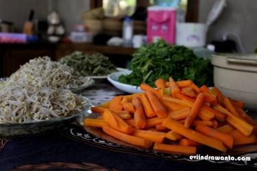 sayur dari kebun organik