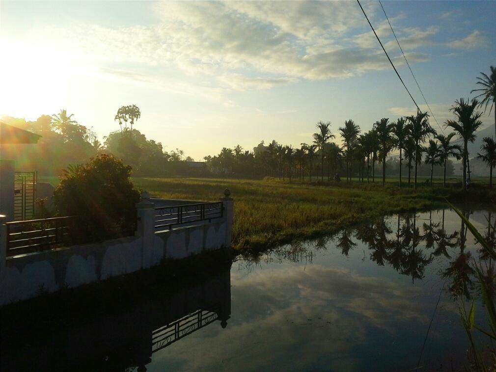 Menyambut Pagi Di Kampung Halaman Travel Blog Evi Indrawanto