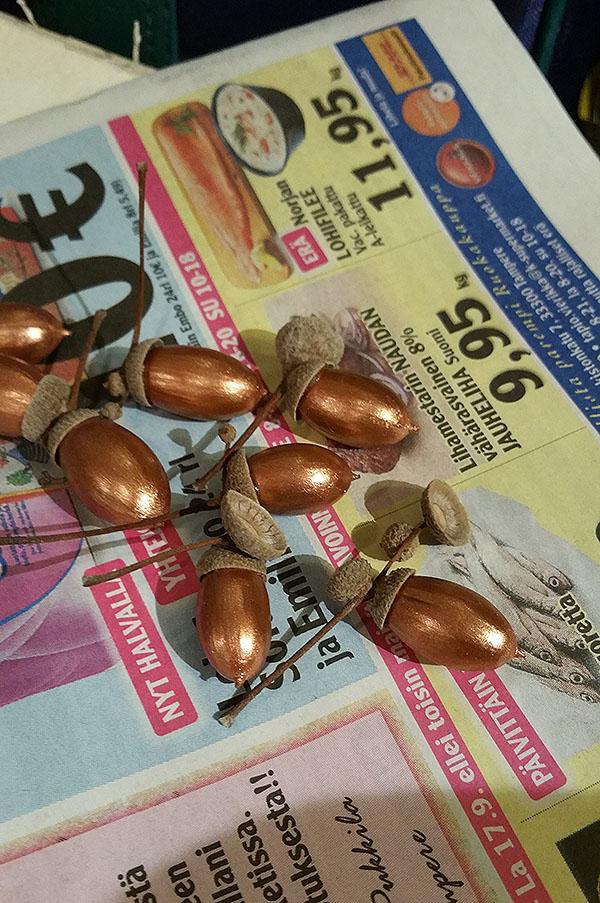 acorns7