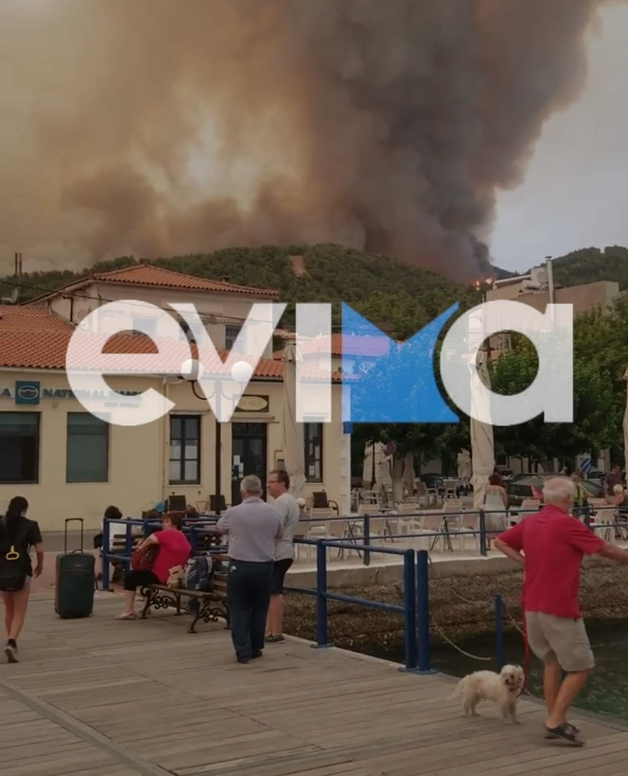 Φωτιά Εύβοια: Εκκενώνεται η Λίμνη με μήνυμα από το 112 – Δύο ferry boat θα μεταφέρουν τον κόσμο στην Αιδηψό
