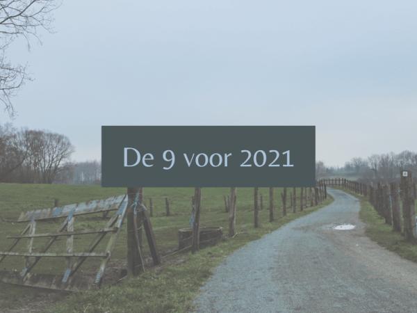 9 doelen voor 2021