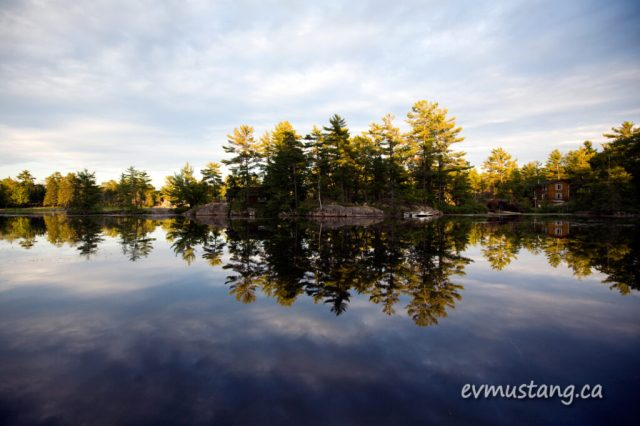 image of trees reflected in water on a lake at a cottage on Catalina Bay, sunset
