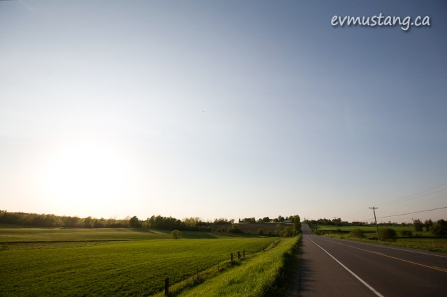 image of a road beside a green field in spring
