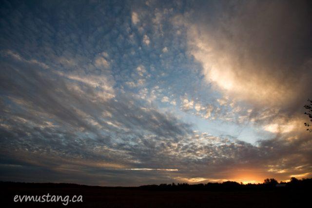 image of sunset over Miller Creek Marsh