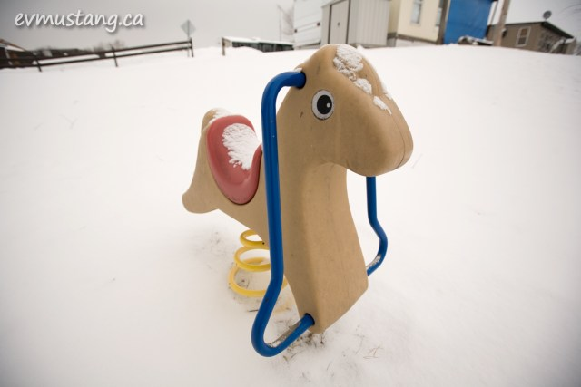 image of hobby horse in winter