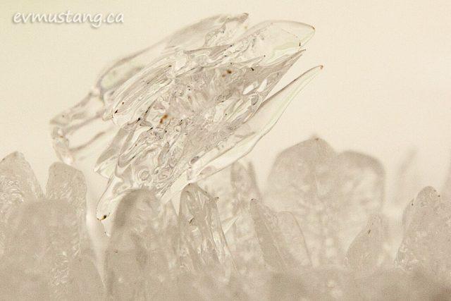 rice_lake_ice_02