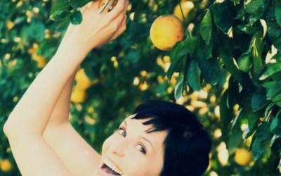 Six on Success, Jen McLaughlin, Fed Wellness, LLC