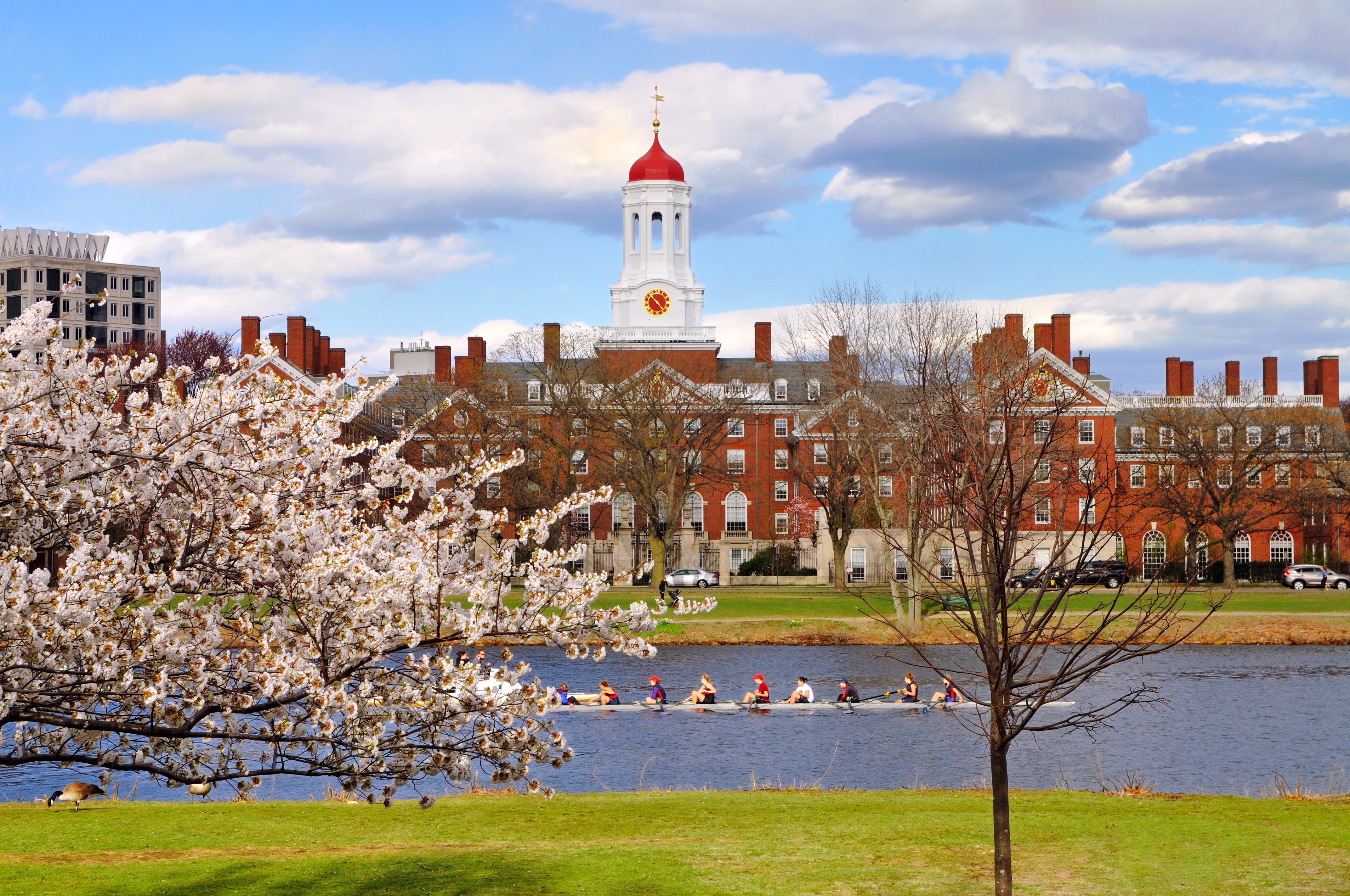 Harvard University endowment shows support for crypto