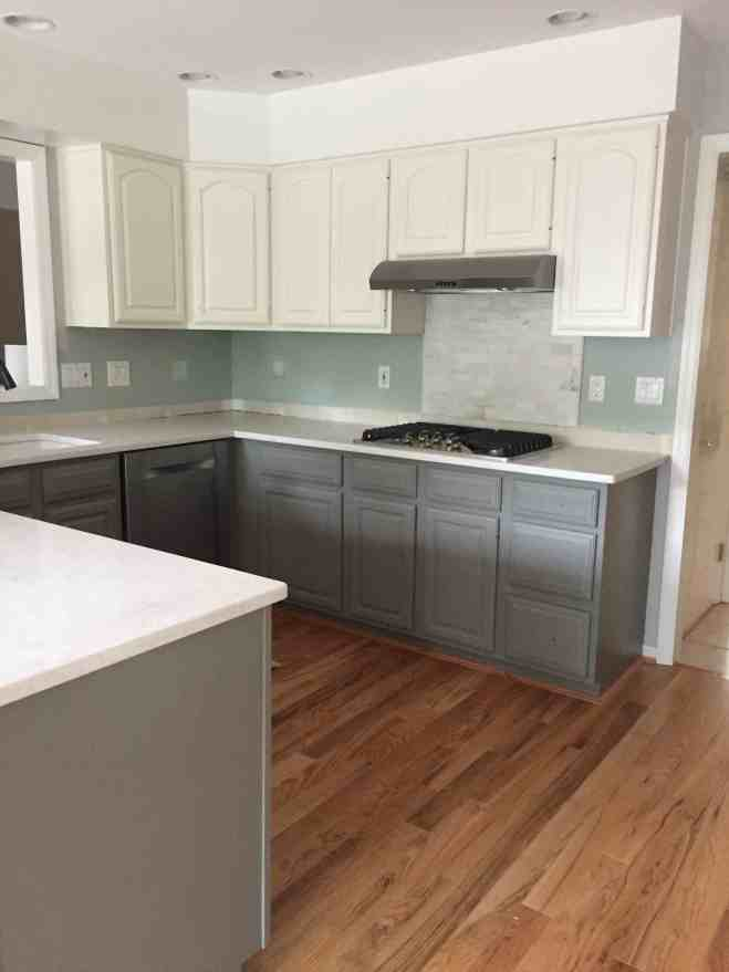 Gray and White Kitchen Mistint