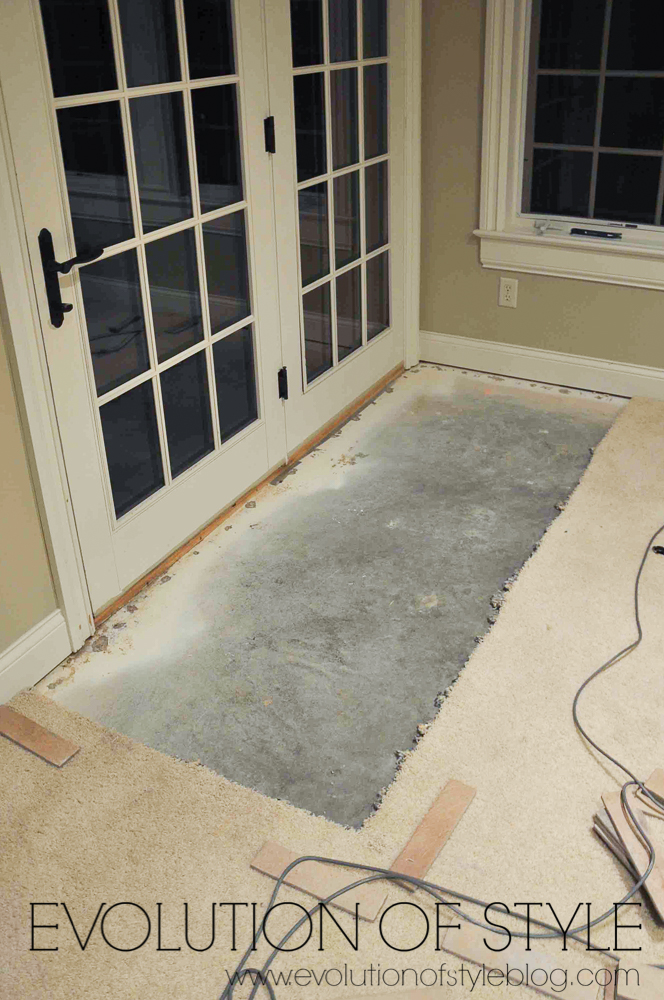 Walkout Basement with Carpet Removed