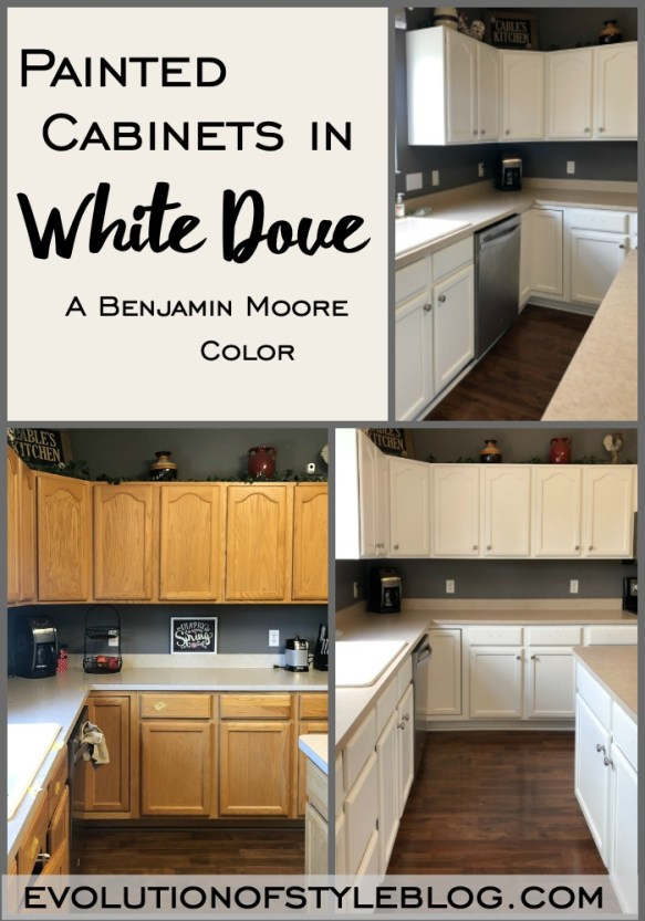 Painted Kitchen Cabinets in White Dove - Evolution of Style