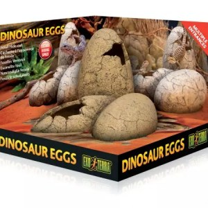 Exo Terra Dinosaur Eggs Fossil Hide Out PT2841