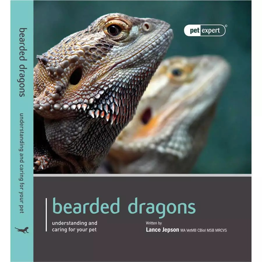 Pet Expert - Bearded Dragons