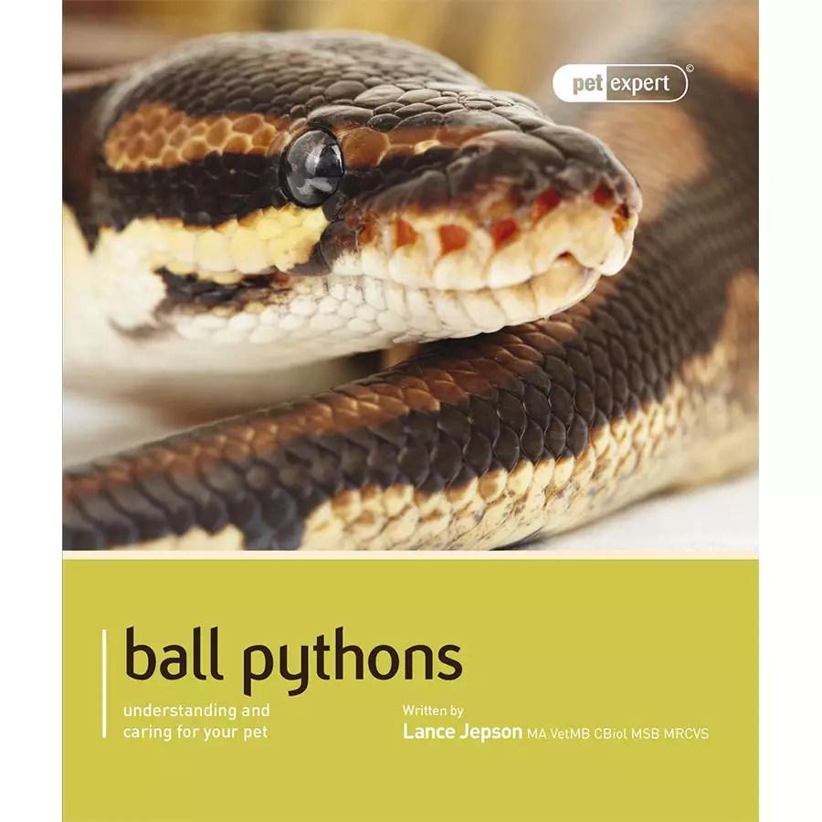 Pet Expert - Ball Pythons