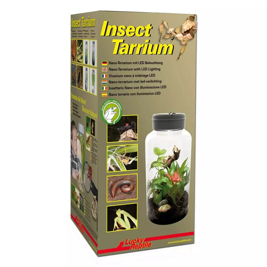 Lucky Reptile InsectTarrium 5 Litre