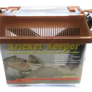 Lucky Reptile Kricket Keeper small