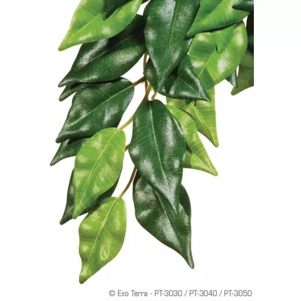Exo Terra Silk Plant Ficus Small