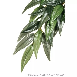 Exo Terra Silk Plant Ruscus Small