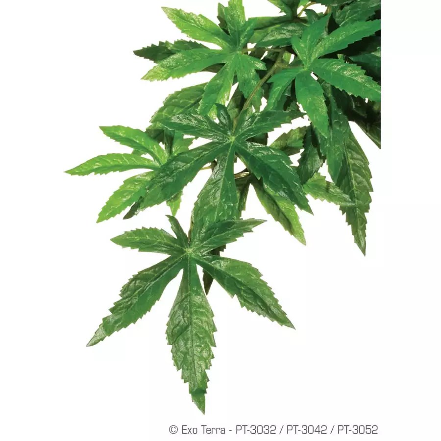 Exo Terra Silk Plant Abutilon Medium