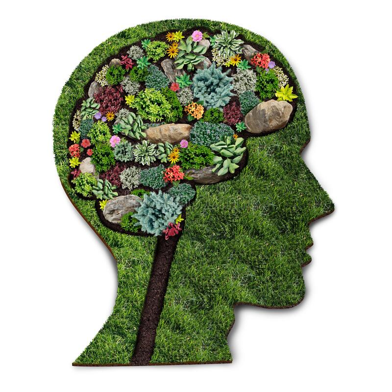 Image shows a grass garden in the shape of a head with the brain area full of flowers. This image could represent the positive thinking needs to work counseling jobs in Wilmington, NC. We are hiring for licensed therapist jobs and mental health clinician jobs. 28411 | 28412 | 28451