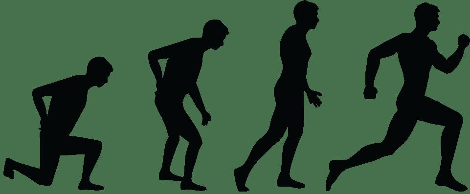 Evolve Chiropractic