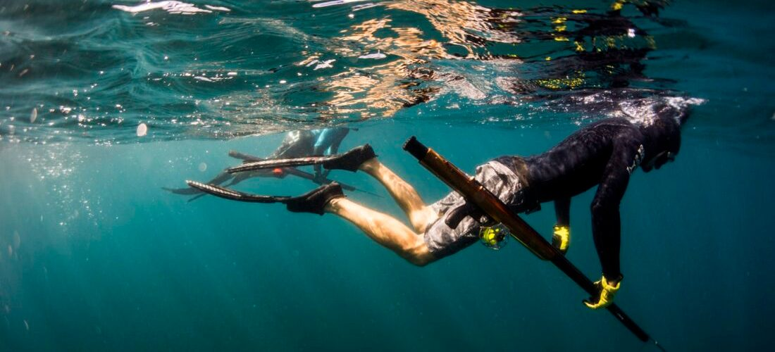 Spearfishing course freediver team never dive alone