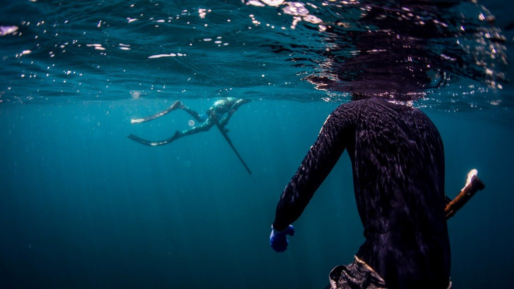 Spearfishing safety one up one down never dive alone