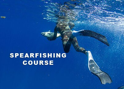Spearfishing course freediver with fish