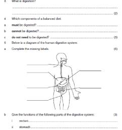Digestion worksheet [ 1247 x 834 Pixel ]