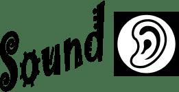 Light Vs Sound Worksheet