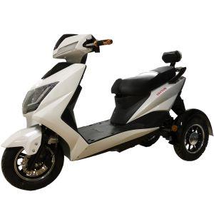 Купить электрический трицикл в Киеве. Электрический трицикл 800-1500 Вт.