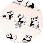 Baiwoda Coque Huawei P9 Lite Housse en Silicone TPU Coque Clair Transparent Étui Souple Mince Coque Légère Flexible Housse de Protection avec Design Unique-Kung Fu Panda