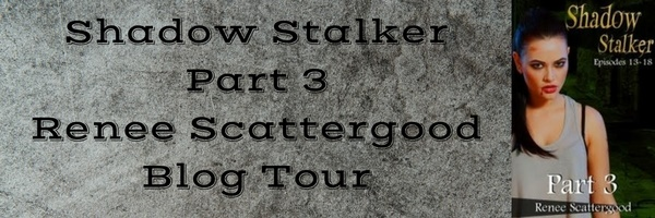 shadow-stalker-blog-tour-banner