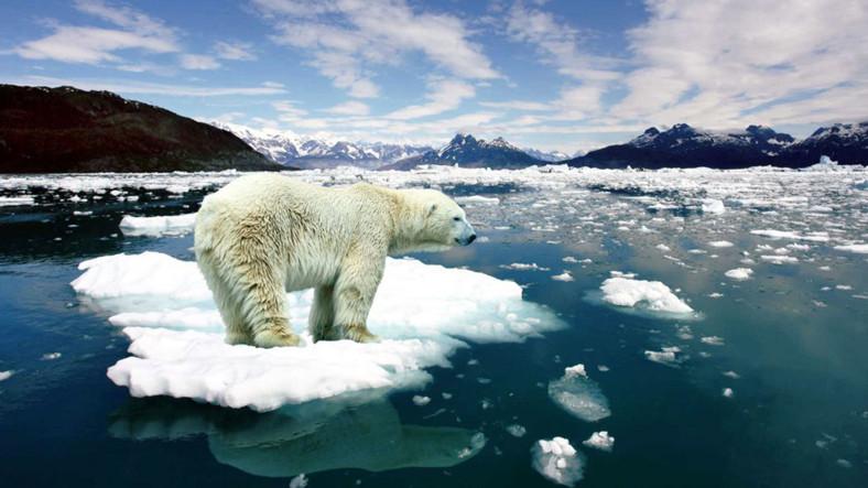 kuzey-buz-denizi-ndeki-sicaklik-artisi-inanilmaz-boyutlara-ulasti-1479728880