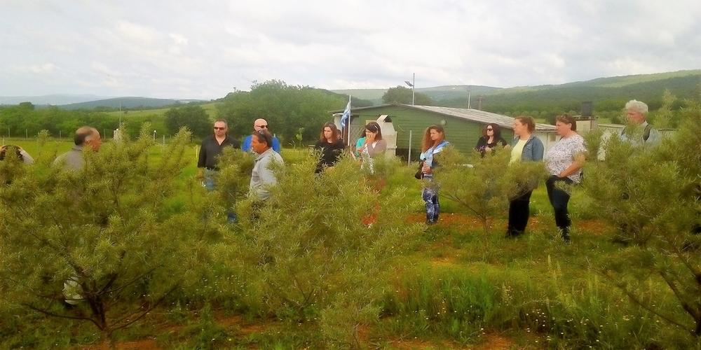 Οργανώνεται περισσότερο η Ομάδα Παραγωγών «Θράκης Θησαυρός» για τα αρωματικά φυτά