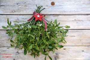 Mistletoe – Word of the day – EVS Translations