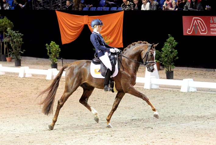 Bijscholing 'Jonge paarden rijden' met Johan Hamminga