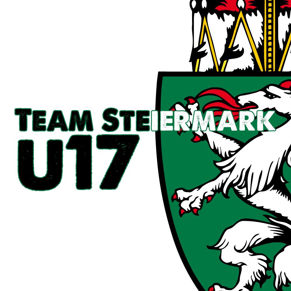 Meisterschaftslogo TS U17