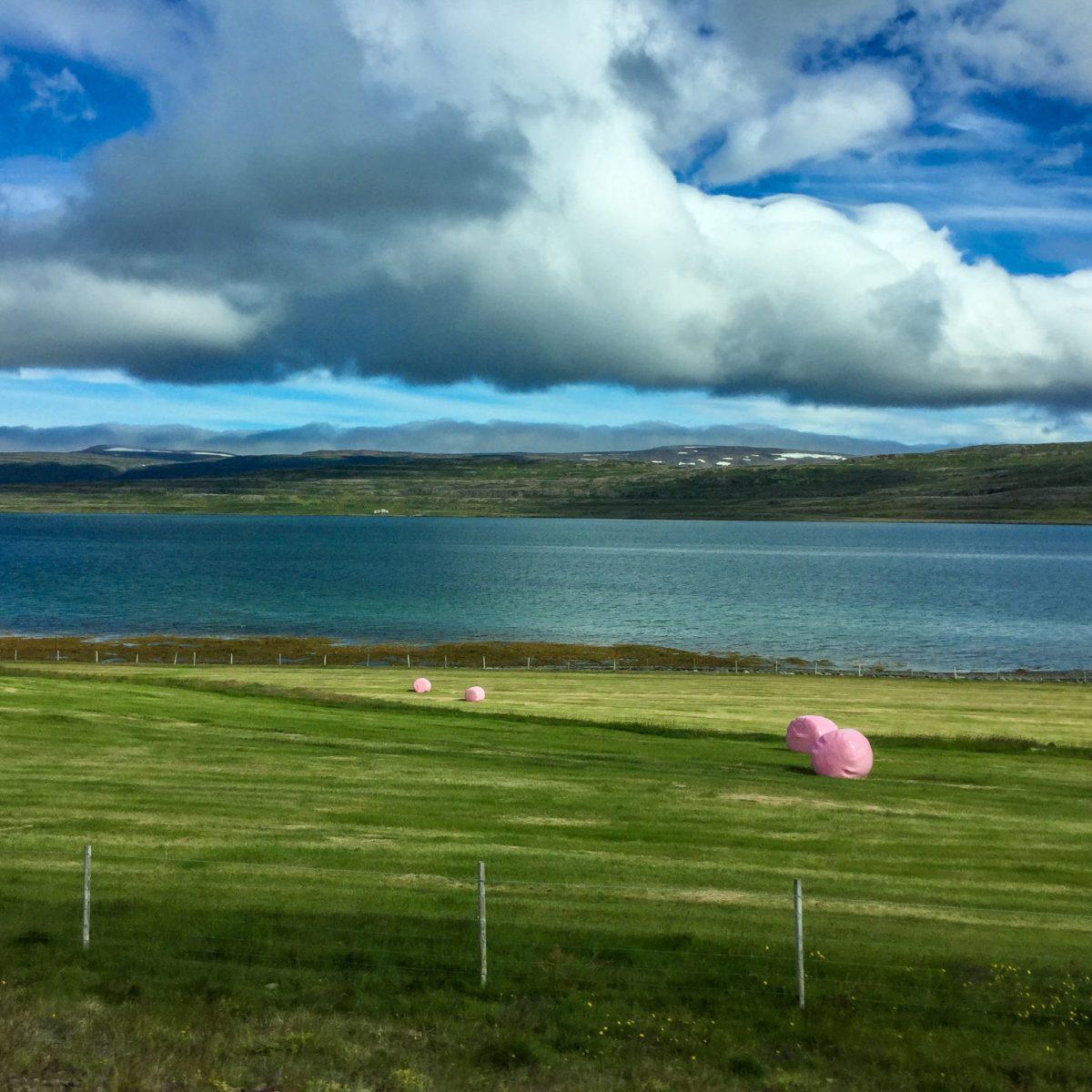fotografia krajobrazu Islandia
