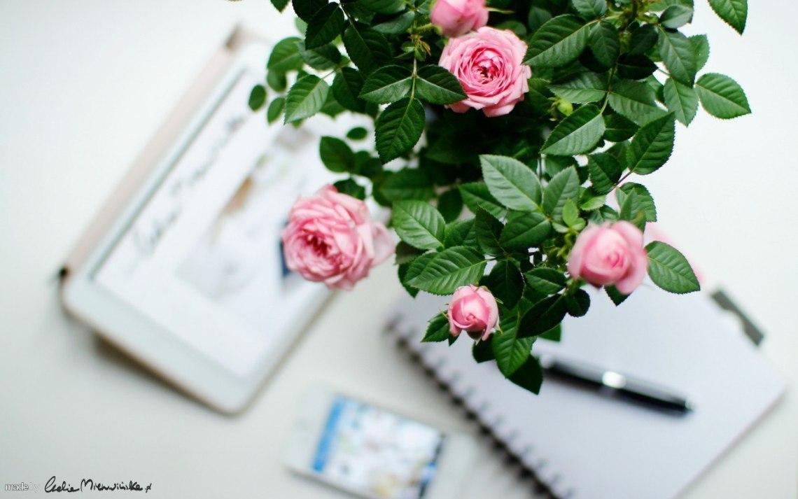 kwiaty-akcesoria-lg