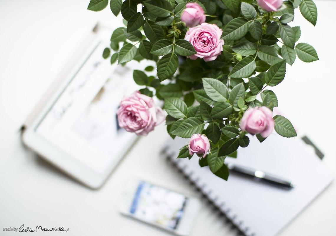 róze-pisanie-blog
