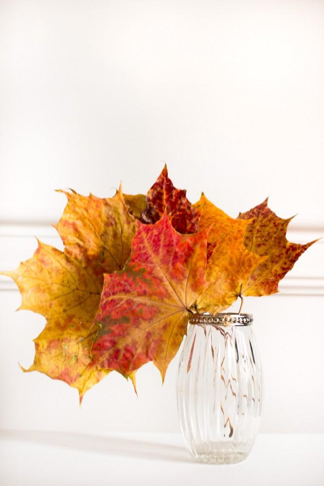 atrybuty-jesieni