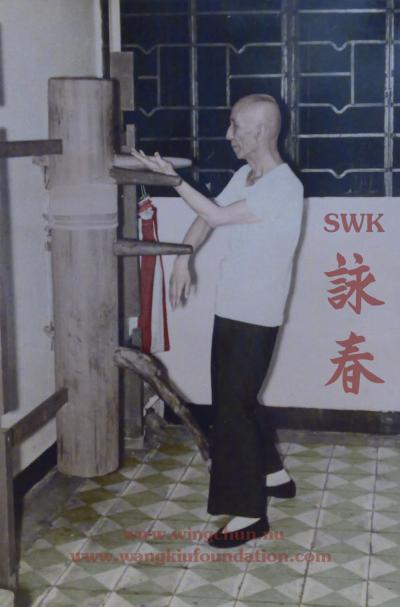 Yip Man - Dummy movement 32 Color (Private collection of WKF)