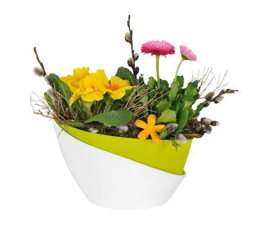 Proč je samozavlažovací květináč ideální volba?