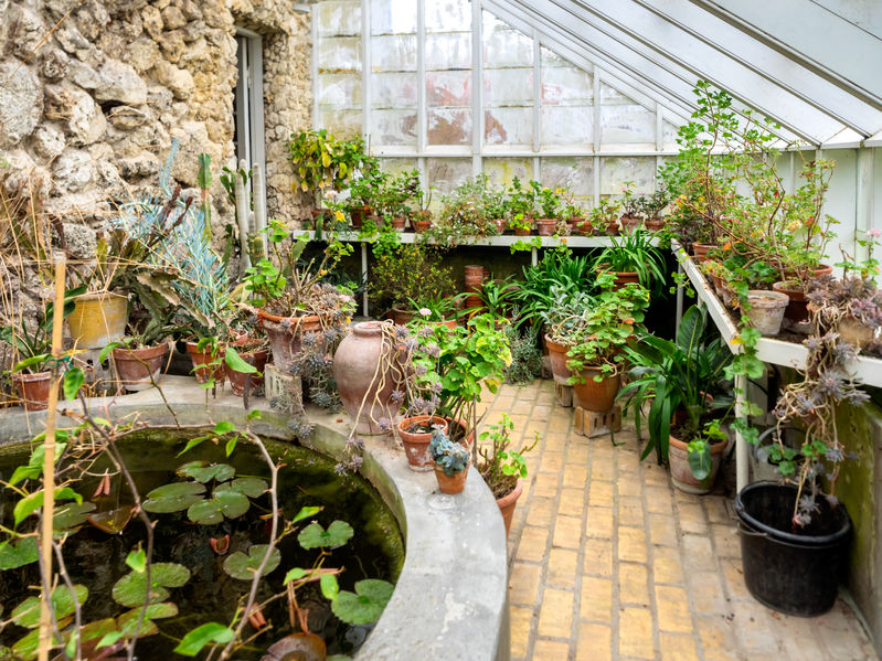 55901165 – interior of an old vintage bathroom greenhouse