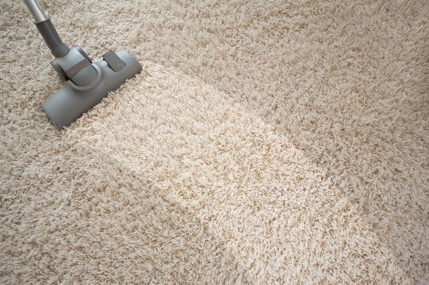 54014543 - vacuuming rough carpet in living room with vacuum cleaner