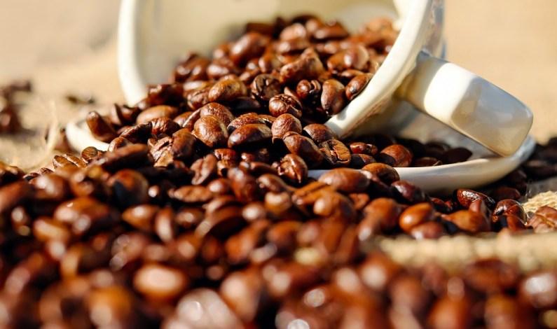 Jak se vyrábí váš oblíbený kávový nápoj?