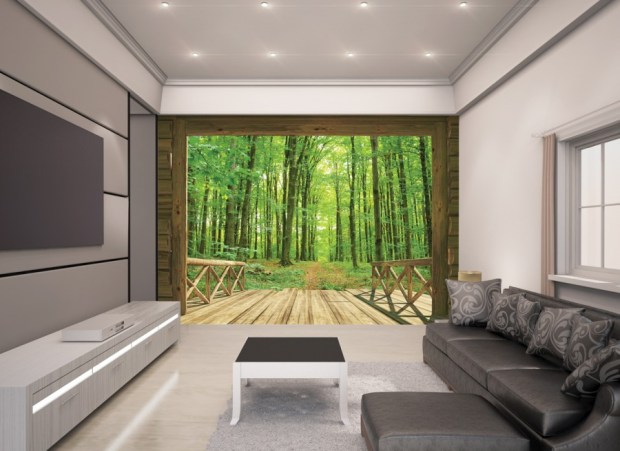 Woodland-Forest-Room-Scene