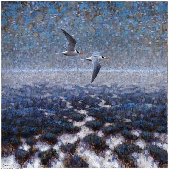 ewoud-de-groot-wildlife-birds02